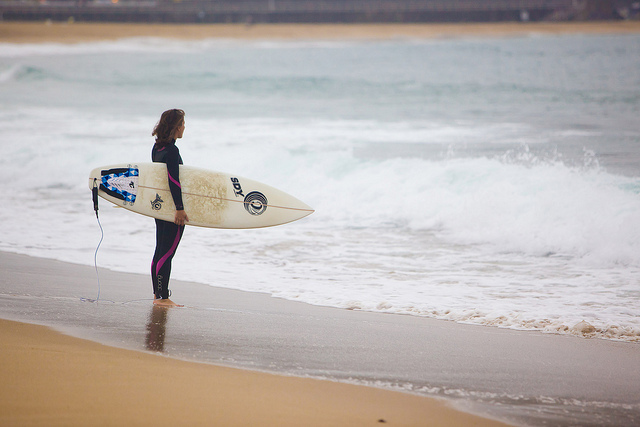 surfera